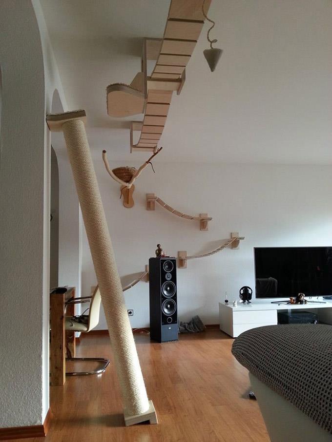 Kattenkamer maken krabpaal kopen tot 70 korting op for Wohnung design diy