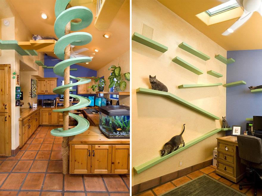 kattenkamer poes
